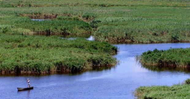 Дунайский биосферный заповедник, Одесса